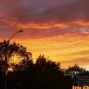 June 21 2021 9:05pm 18C First brilliant Summer sunset -Summer solstice Thornhill