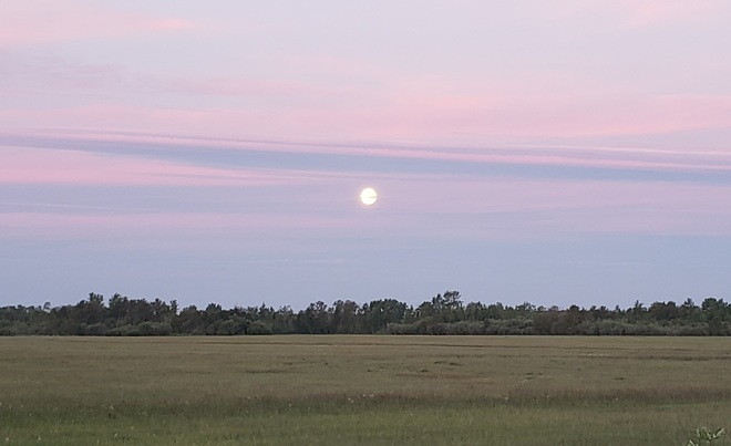 Moon rise at sunset Richer, MB