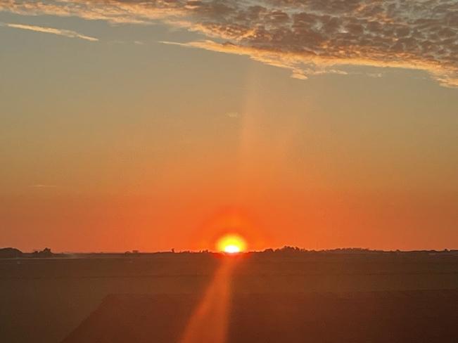 Good morning sunshine. Rosemary, Alberta, CA