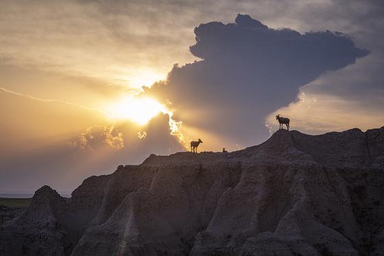 Josh Rowan, Badlands National Park