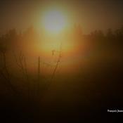 Levers de soleil dans la brume