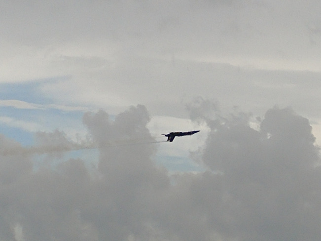 Blue Angels of Pensacola Pensacola Beach, FL, USA
