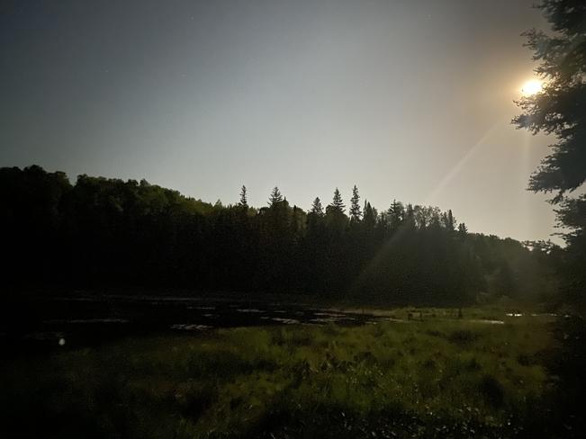 Good night Moon Callander, Ontario, CA
