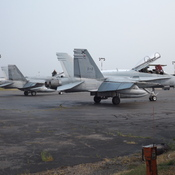 CANADIAN FORCES F 18`S