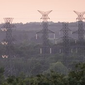 Cross country Hydro Tower line insulators glowing in the late day Sun