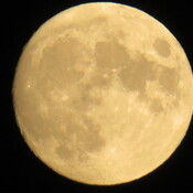 Moon over Bridgewater NS.
