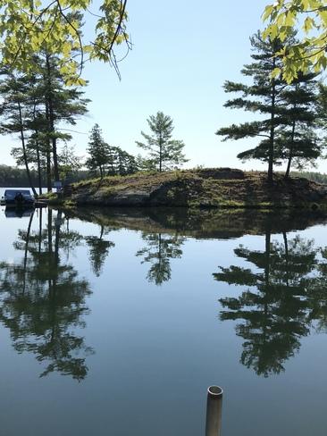 Buck Lake Mirror Image South Frontenac, ON
