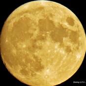 Lune du 22 août .