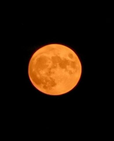 tonight's moon New Hamburg, ON