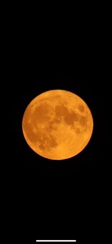 Full 'buck' Moon Oakville, Ontario, CA