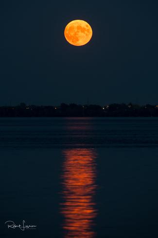 Lever de la pleine lune du tonnerre Verdun, Montréal, QC