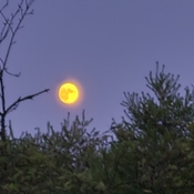 Full moon, almost, July 15, 2021