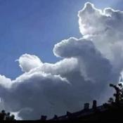 A Bear in the Sky