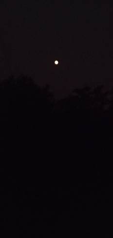 4:10 a.m. moon and it's looking pretty lonely Pointe-Claire, QC