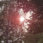 soleil de fin de journée
