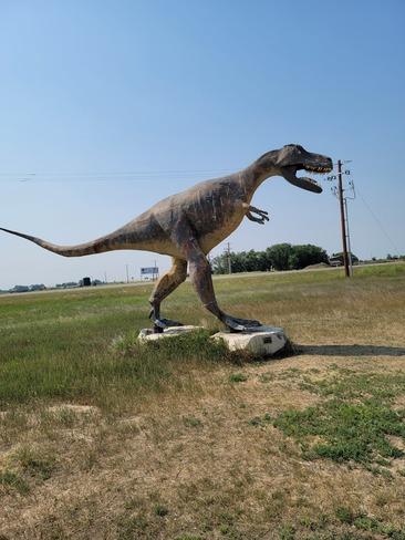 dinosaur park Dinosaur Provincial Park, AB