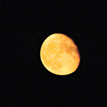 Moon looked awesome tonight!