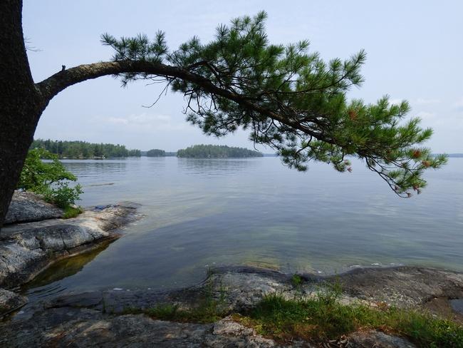 Charleston Lake Charleston Lake Provincial Park, Lansdowne, ON