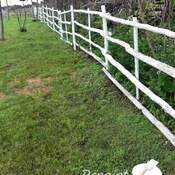 Painting fence on the farm