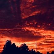 Lever de soleil 🌄