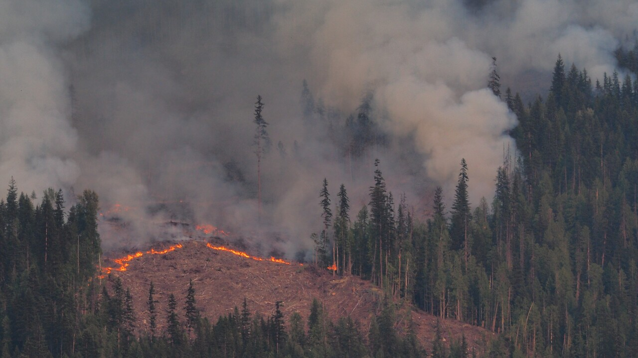 Bunting Rd wildfire, BC
