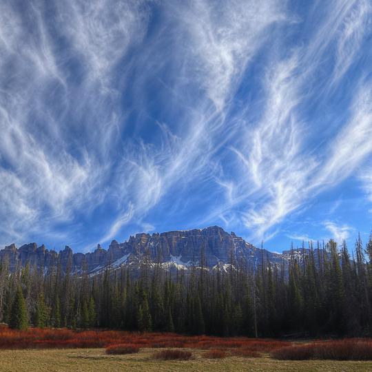 Bridger-Teton National Forest