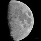 Miss Lune .