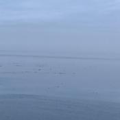 Île aux Basques, entre ciel et mer.