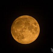 Pleine lune du mois d'août 2021/Gaspé
