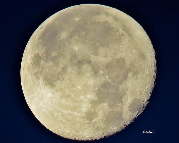 Pleine Lune Bleue . St-André de Kamouraska