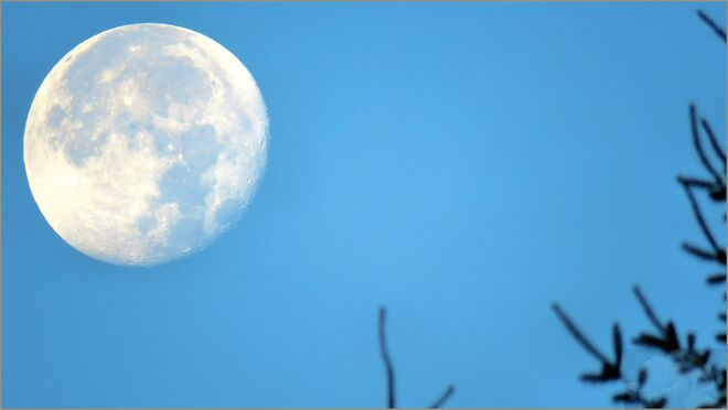 August's full Moon was traditionally called the Sturgeon Moon . Gold River, BC