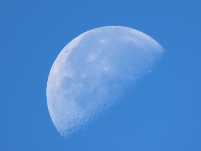 Moon shots Cambridge, ON