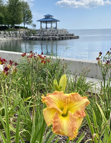 Peaceful moments Port Credit, Ontario, CA