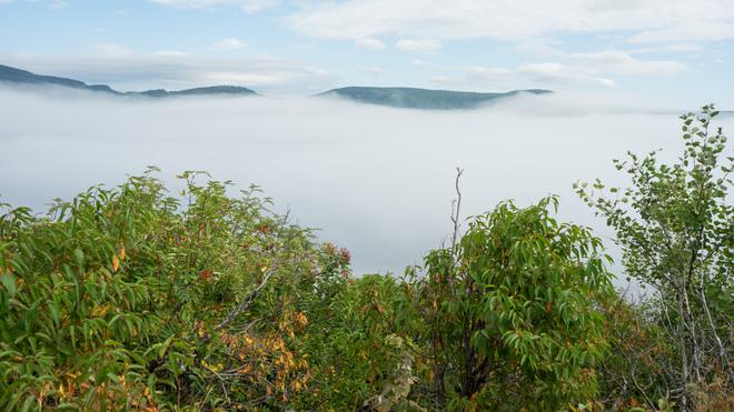 Brouillard à Tadoussac Tadoussac, QC