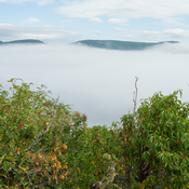 Brouillard à Tadoussac