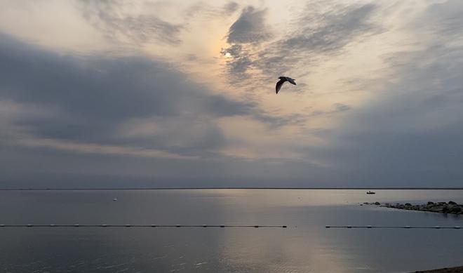 Perfect shot Kinbrook Island, Alberta