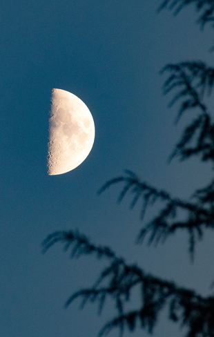 September Half Moon Port Coquitlam, British Columbia, CA