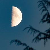 September Half Moon
