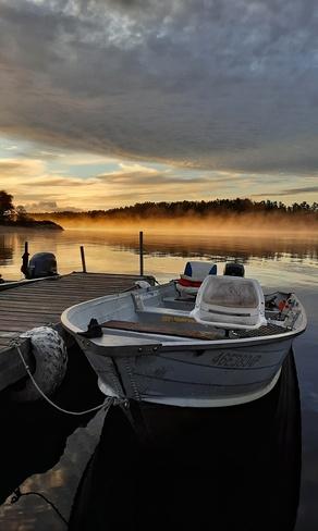 Misty morning Brennan Harbour, ON