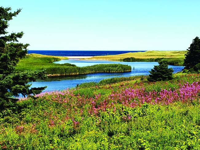 Northeast shore of PEI Priest Pond, Prince Edward Island
