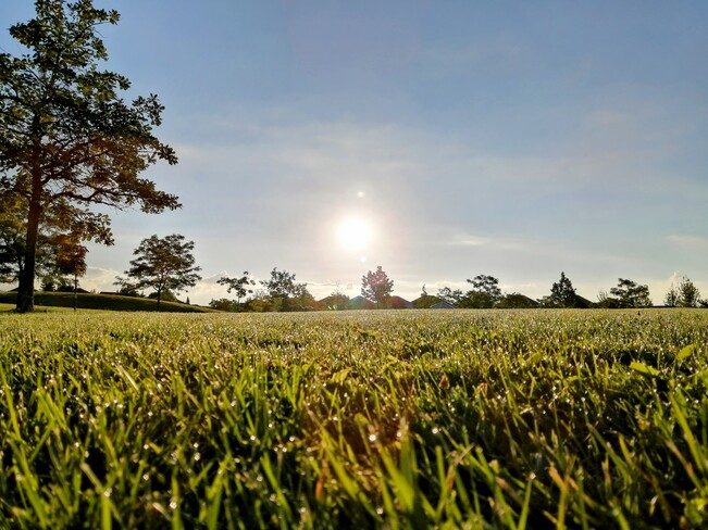Good Morning Burlington, ON