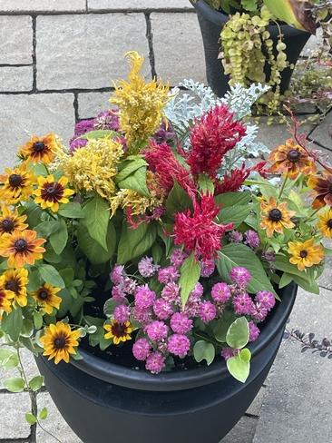 Fall planter. Manotick, Ontario, CA