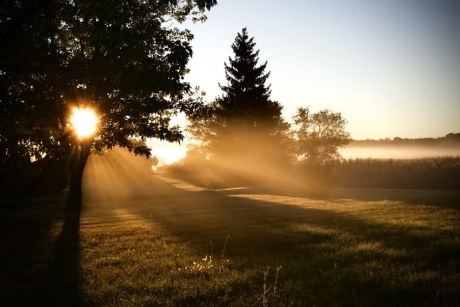 Blissful morning Rossmore, Ontario, CA