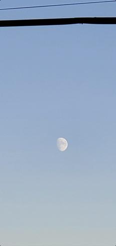 Beauty Moon Kennedy Park, ON