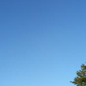 Nice big sky!