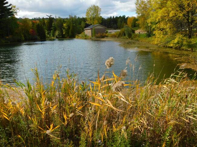 Quiet Water Bridgeport, ON