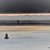 Lumière sur le Saguenay.