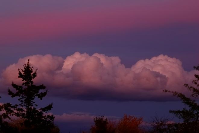 Color Cloud Brampton, ON