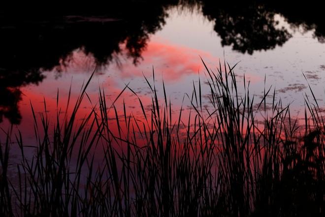 Sky Reflection Brampton, ON