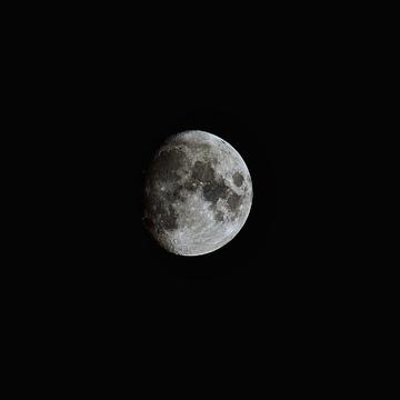 Moon tonight